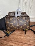 Louis Vuitton M44873 Palm Springs Mini Backpack