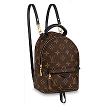 Louis Vuitton M44873 Palm Springs Mini Backpack