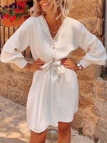 Fashion Pure V neck Long sleeve Fastener Skater Dresses