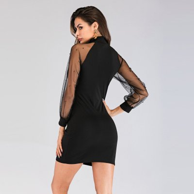 Fashion Sexy Grenadine Gored Long sleeve Shift Dresses