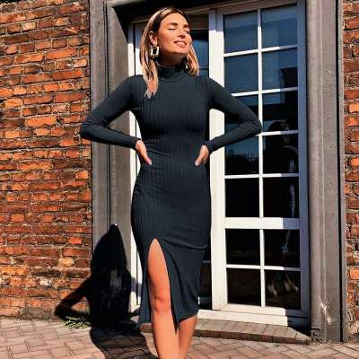 Sexy Knit Vent Pure Long sleeve High collar Bodycon Dresses