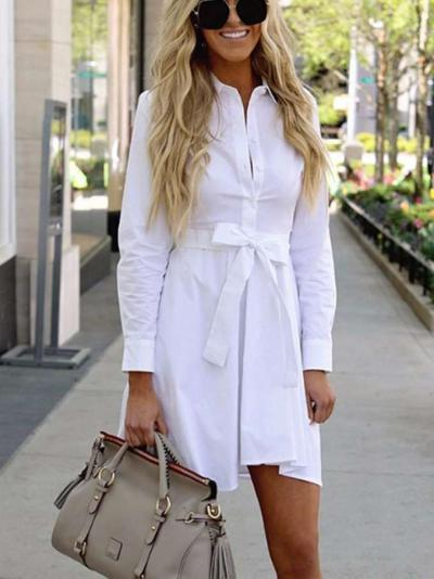 Pure Lapel Long sleeve Lacing Skater Dresses