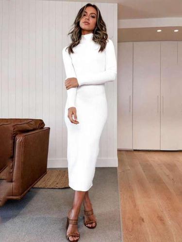 Fashion High collar Long sleeve Knit Bodycon Dresses