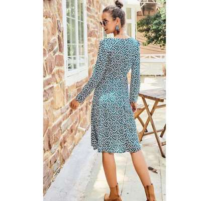Casual V neck Print Long sleeve Skater Dresses