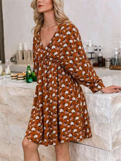 Fashion Print V neck Long sleeve Shift Dresses