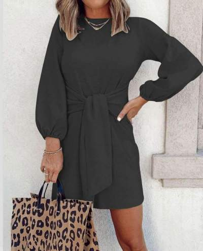 Fashion Casual Pure Round neck Long sleeve Lacing Skater Dresses