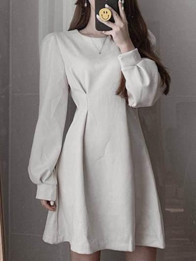 Pure Long sleeve Round neck Skater Dresses