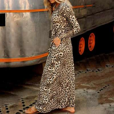 Casual Leopard print Round neck Long sleeve Skater Maxi Dresses