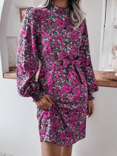 Fashion Floral stand collar lantern sleeve long sleeve chiffon skater dresses