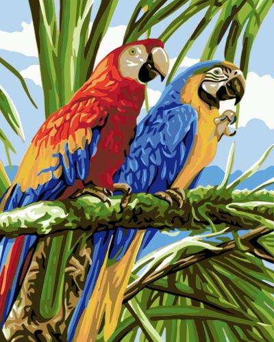 2021 New Arrival Hot Sale Parrot Paint By Numbers Kits Uk WM912