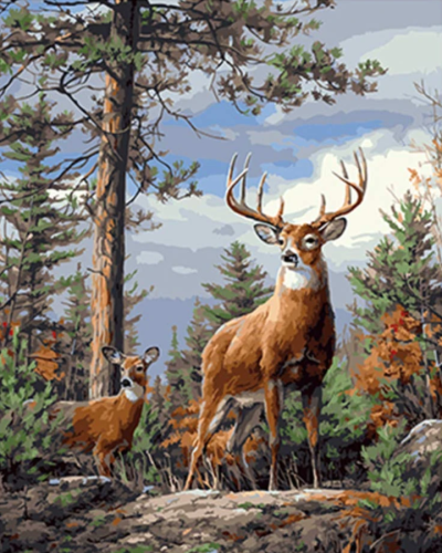 2021 Animal Deers In The Forest Paint By Numbers Kits Uk VM00096