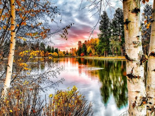 2021 New Arrival Hot Sale Landscape Nature Lake Paint By Numbers Kits Uk Y5222