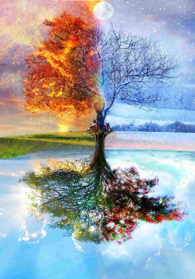 2021 Four Seasons Tree Diy Paint By Numbers Kits Hot Sale Uk WM103