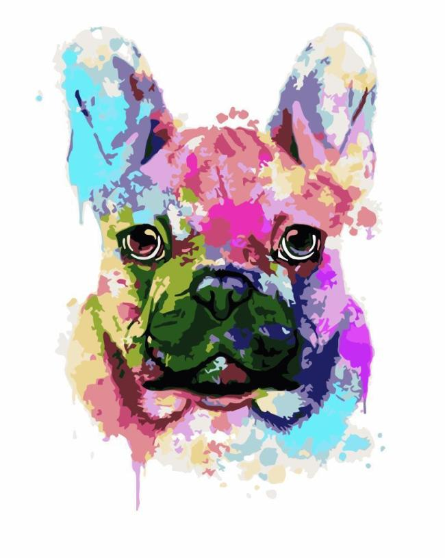 2021 Colorful Dog Diy Paint By Numbers Kits New Arrival Hot Sale Uk WM1733