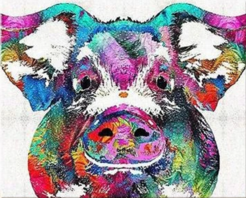 2021 Colorful Modern Art Pig Diy Paint By Numbers Kits Hot Sale Uk BN92084