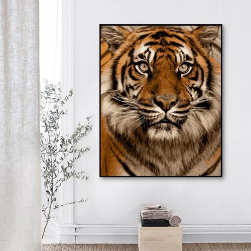 2021 New Arrival Hot Sale Tiger Paint By Numbers Kits Uk WM249