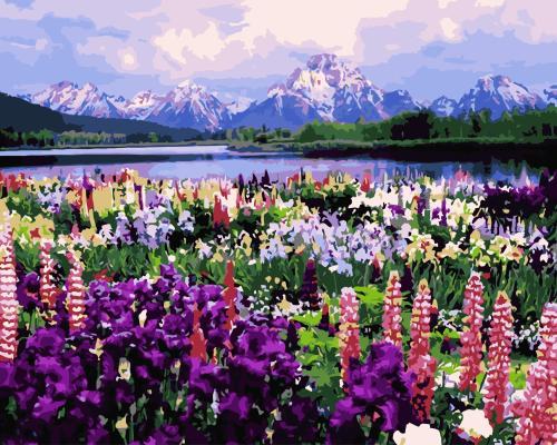 2021 Best Hot Sale Lavender Paint By Numbers Kits Uk WM153