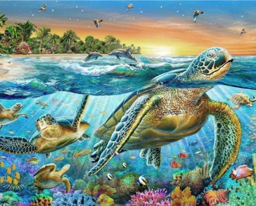 2021 Turtle Diy Paint By Numbers Kits Uk VM90138