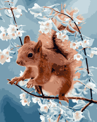 2021 Squirrel Diy Paint By Numbers Kits Uk WM839