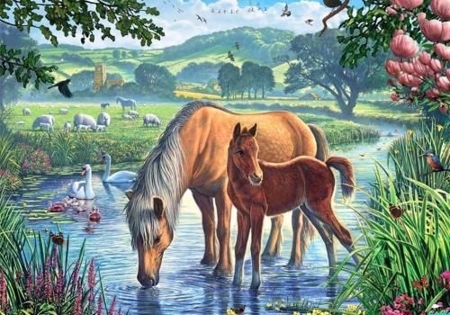 2021 Paint By Numbers Kits Uk VM90793