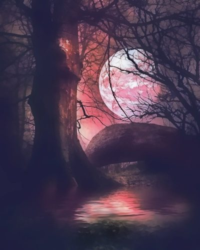 2021 Hot Sale Landscape Moon Tree Diy Paint By Numbers Kits Uk VM93048