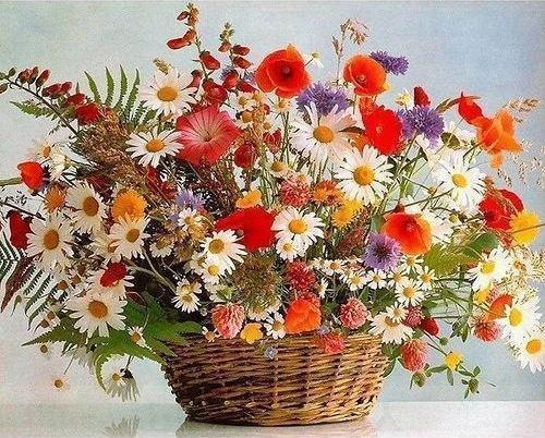 2021 Flower Diy Paint By Numbers Kits UK PH9275