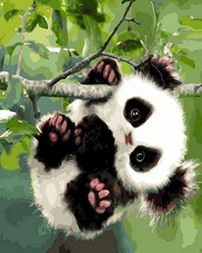 2021 Hot Sale Panda Paint By Numbers Kits WM564