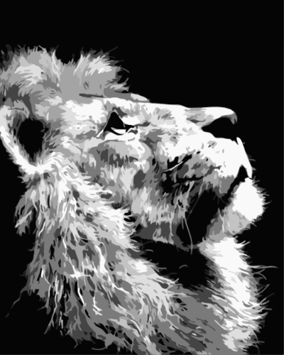 2021 Hot Sale Classic Lion Diy Paint By Numbers Kits Uk WM417