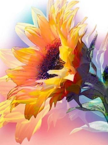 2021 Flower Paint By Numbers Kits Uk NP1673