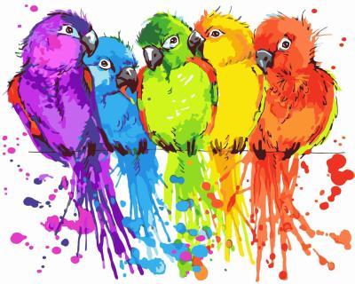 2021 Best Hot Sale Parrot Paint By Numbers Kits Uk WM236