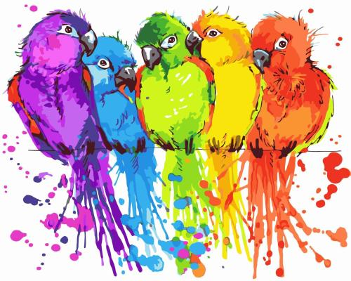 2021 Best Hot Sale Parrot Paint By Numbers Kits Uk WM236