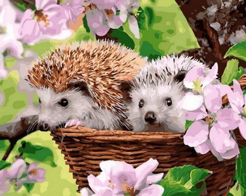 2021 Best Cute Hedgehog Diy Paint By Numbers Kits Hot Sale Uk VM30136