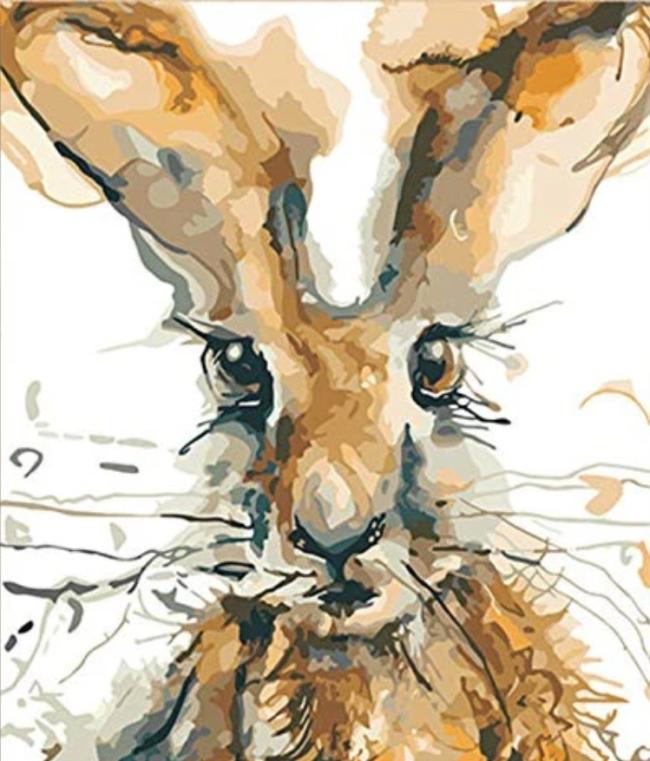 2021 Rabbit Diy Paint By Numbers Kits Uk VM93071