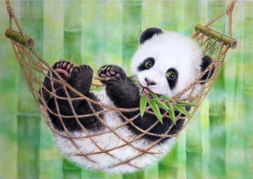 Best Hot Sale Animal Panda Paint By Numbers Kits Uk NP1717