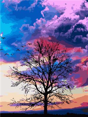 Landscape Diy Paint By Numbers PH9607