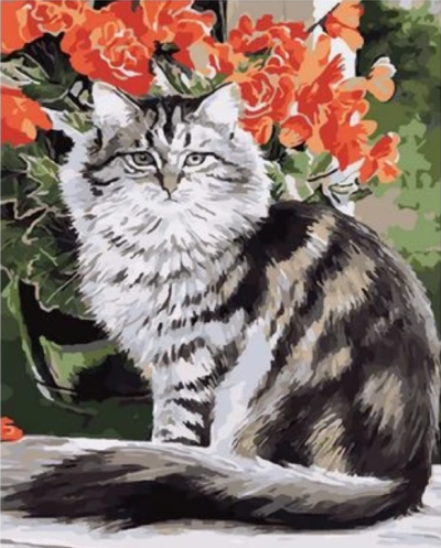 Cat Diy Paint By Numbers Kits XQ2403