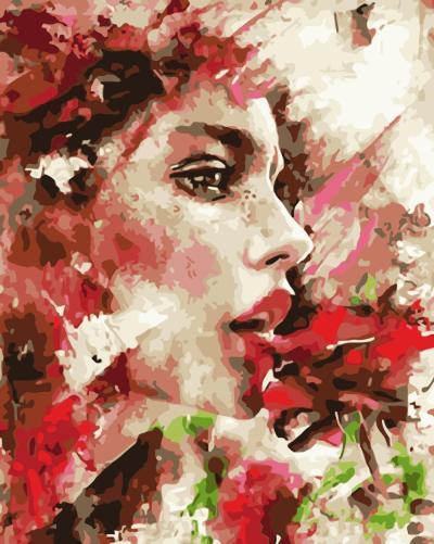 Portrait Woman Diy Paint By Numbers Kits WM984