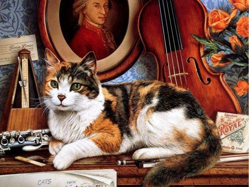 Pet Cat Paint By Numbers Kits VM90673