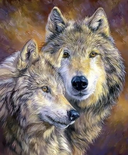 Animal Wolf Diy Paint By Numbers Kits  XQ3286