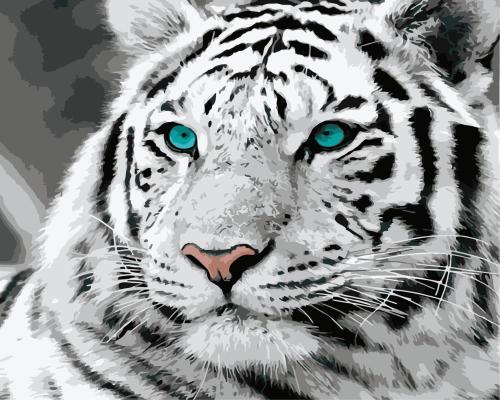 Animal Tiger Diy Paint By Numbers Kits WM1222