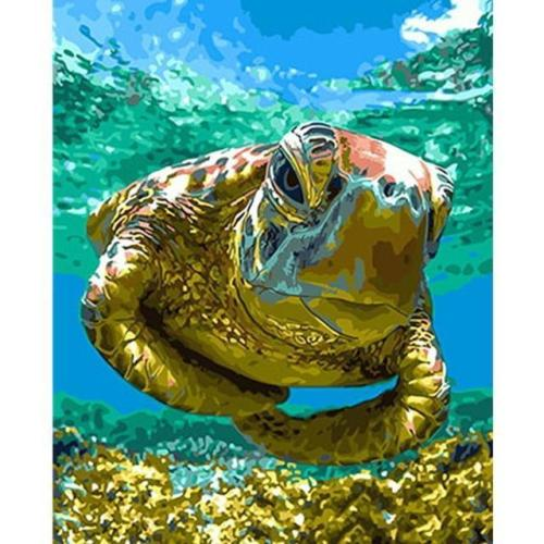 Turtle Diy Paint By Numbers Kits VM57287