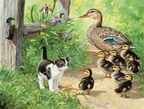Pet Cat Paint By Numbers Kits VM90676