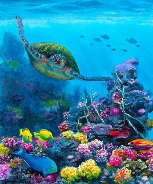 Turtle Diy Paint By Numbers Kits VM90137