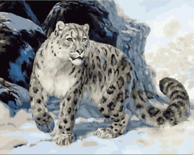 Animal Leopard Diy Paint By Numbers Kits VM95663