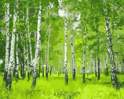 Landscape Forest Diy Paint By Numbers WM079