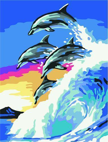 Dolphin Diy Paint By Numbers Kits  XQ3554