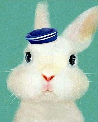 Animal Rabbit Diy Paint By Numbers Kits XQ3088