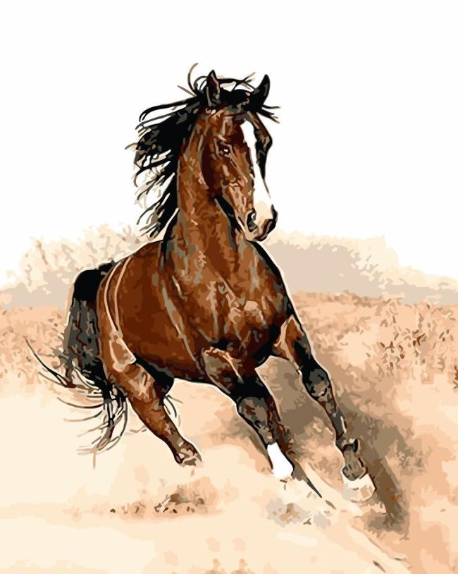 Horse Diy Paint By Numbers Kits WM1105