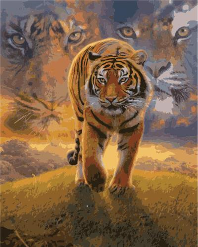 Animal Tiger Diy Paint By Numbers Kits B867