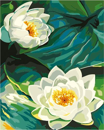 Lotus Diy Paint By Numbers Kits E265